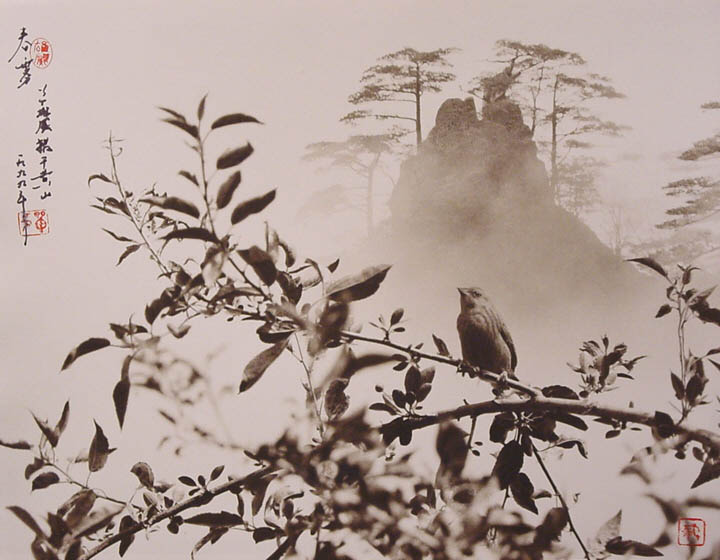 photographs that look like traditional chinese paintins dong hong oai asian pictorialism 25 Photos Made to Look Like Traditional Chinese Paintings
