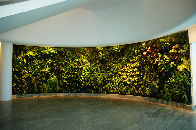 qantas lounge sydney 2 15 Incredible Vertical Gardens Around the World
