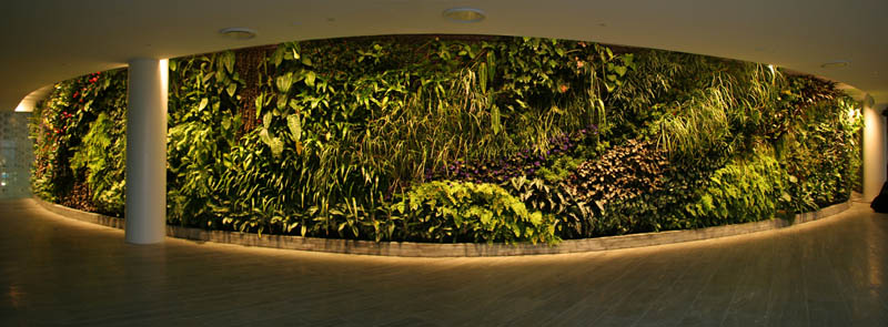 qantas lounge sydney vertical wall garden 15 Incredible Vertical Gardens Around the World