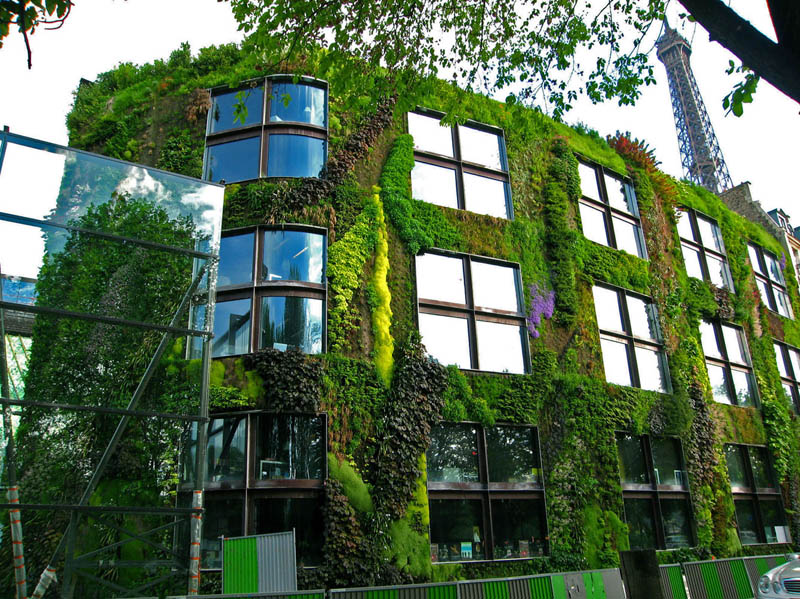 quai branly museum vertical wall garden 15 Incredible Vertical Gardens Around the World