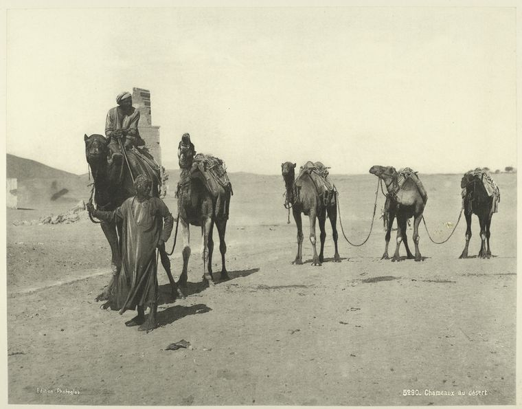 old vintage photos of egypt 1870 1875 22 Rare Photos of Egypt from the 1870s