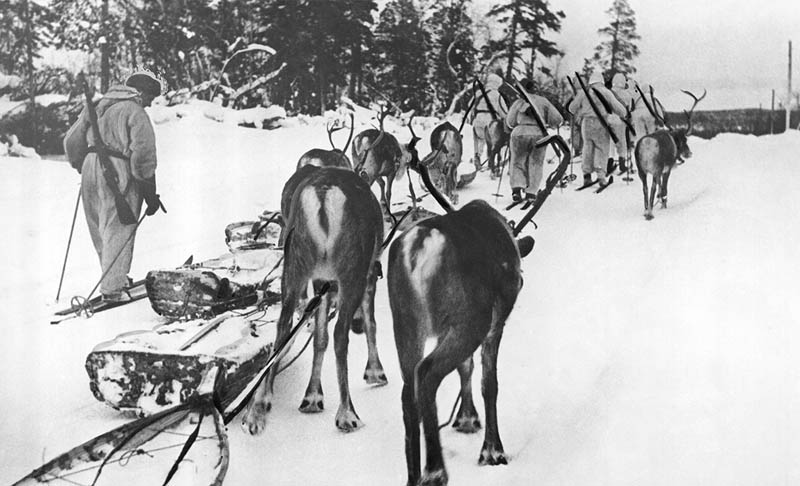 winter war finnish soldiers on skis with reindeer This Day In History   November 30th