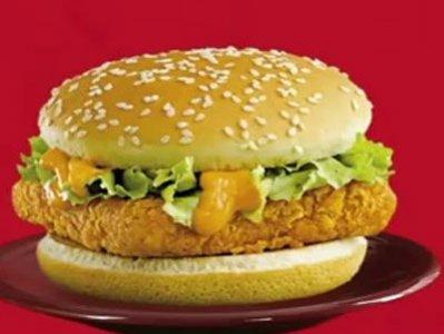 mcdonalds mcspicy paneer india 29 Exotic McDonalds Dishes Around the World