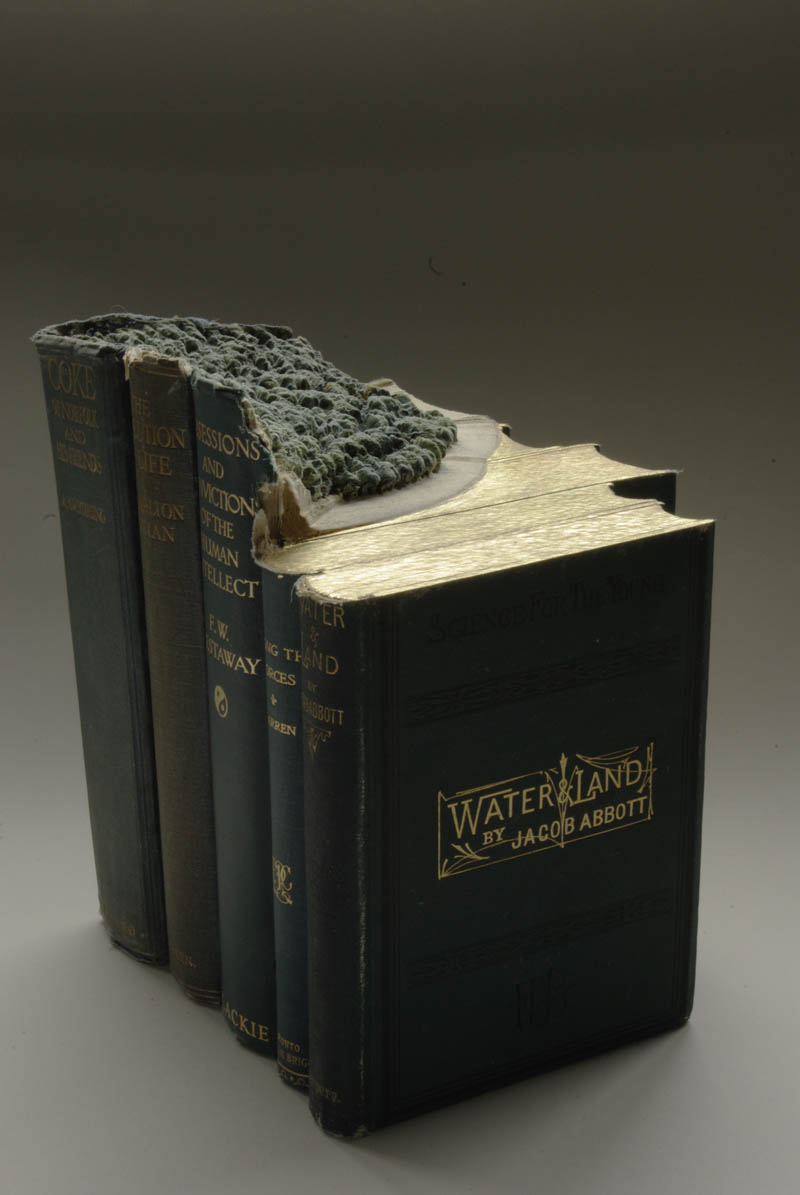 landscapes carved into books guy laramee 17 Incredible Landscapes Carved Into Books