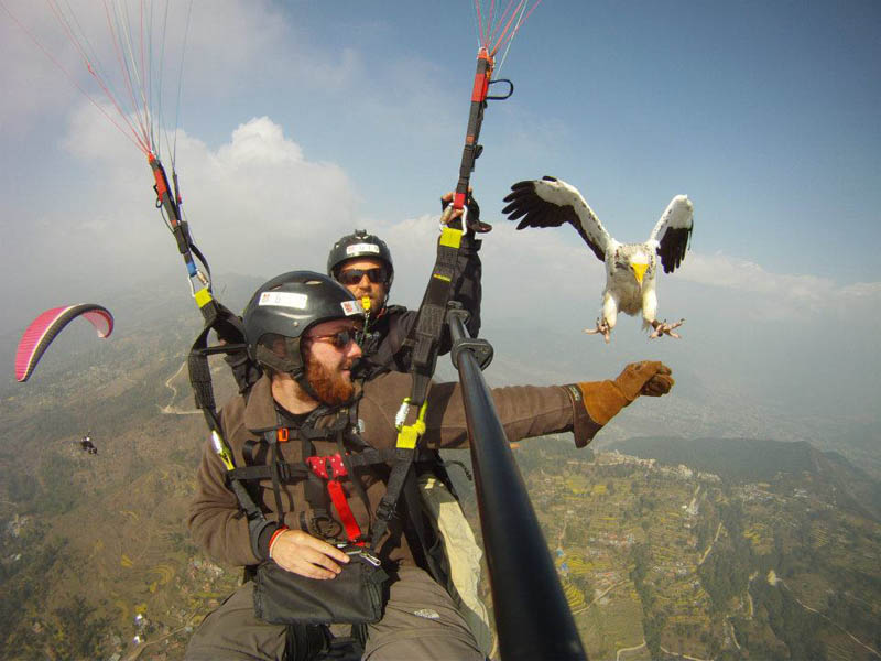 parahawking in nepal The Ultimate Guide to Parahawking in Nepal