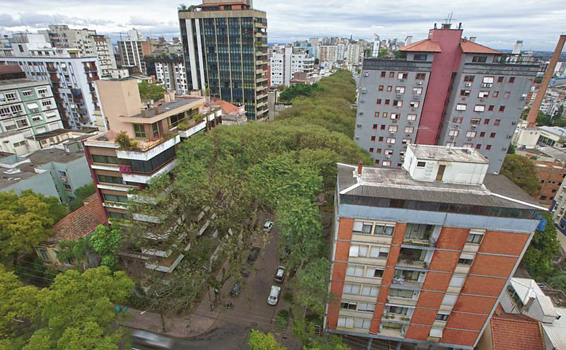 tree covered street porto alegre brazil rue goncalo de carvalho 3 Stunning Street in Porto Alegre, Brazil is Blanketed in Trees