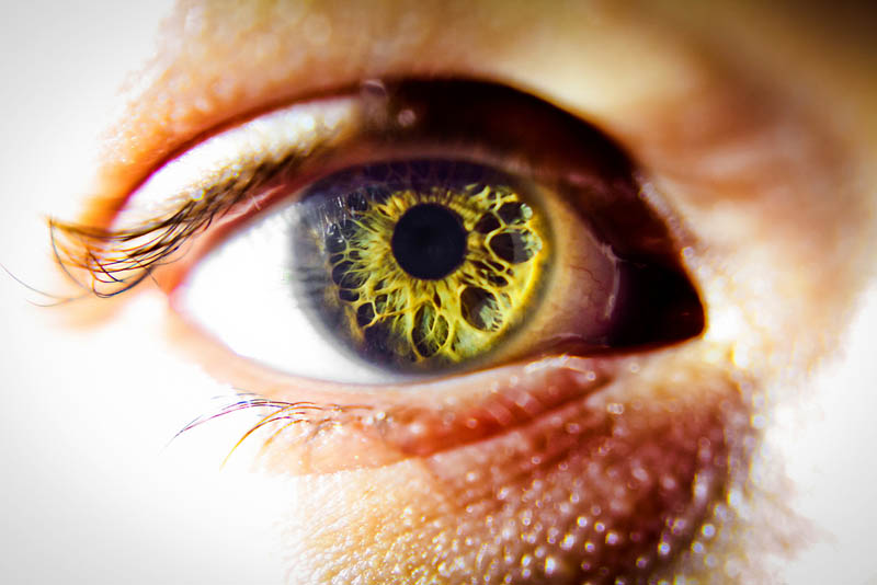Picture of the Day: The Window to Your Soul «TwistedSifter