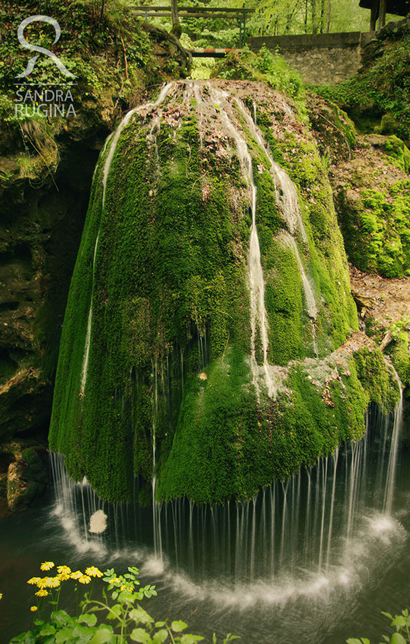 Picture of the day dramatic moss covered waterfall in for Waterfall design etsy