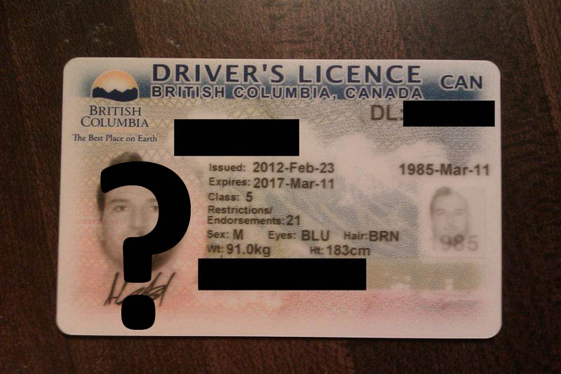 This Guy Went All Out for the Ultimate Driver's LicensePhoto