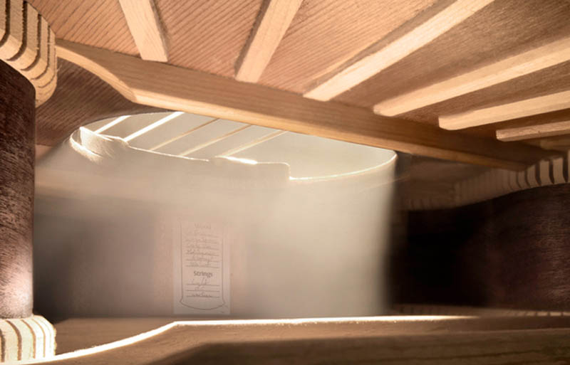 Hidden Landscapes Inside Musical Instruments