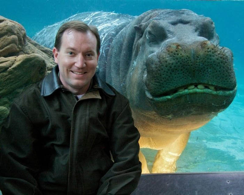 hippo smiling photobomb animal photobombs The 15 Greatest Animal Photobombs of All Time