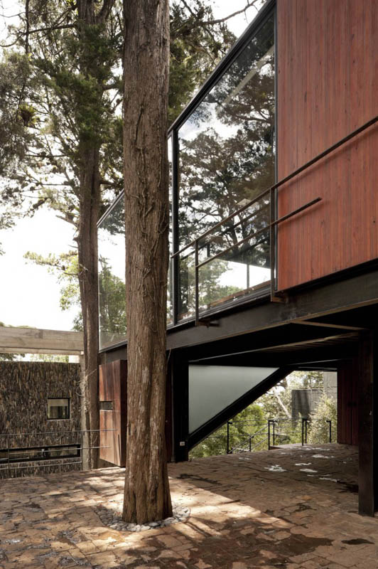 house in forest with trees growing through it 3 An Incredible Home in the Forest With Trees Growing Through It