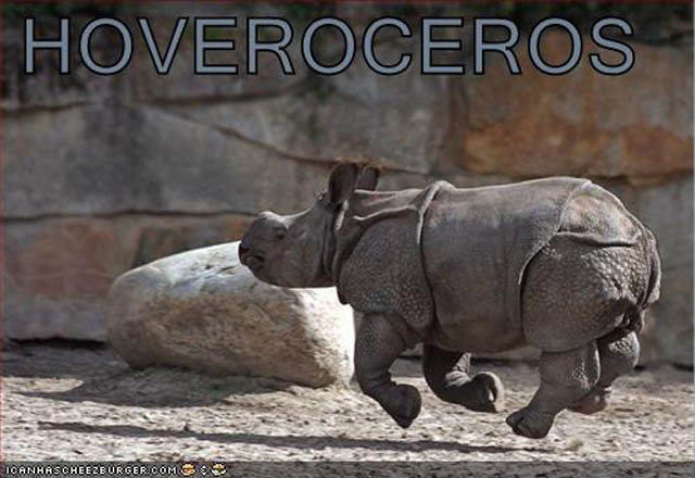 hover rhinoceros The 25 Funniest Hover Animals Ever