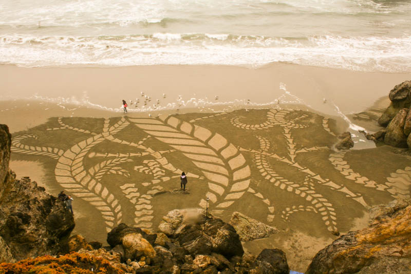 sand beach art andres amador 13 The Incredible Beach Art of Andres Amador