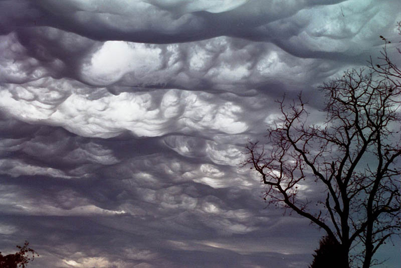 undulatus asperatus 15 Incredible Cloud Formations