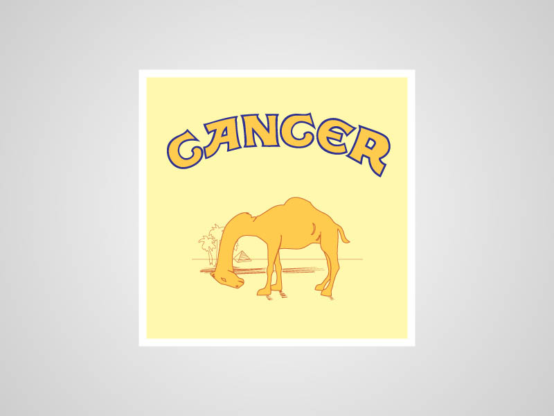 camel funny honest logo What if Logos Told the Truth?