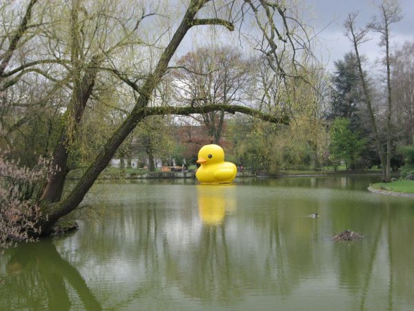 giant inflatable rubber duck florentijn hofman nuremberg germany 1 The World Travels of a Giant Rubber Duck