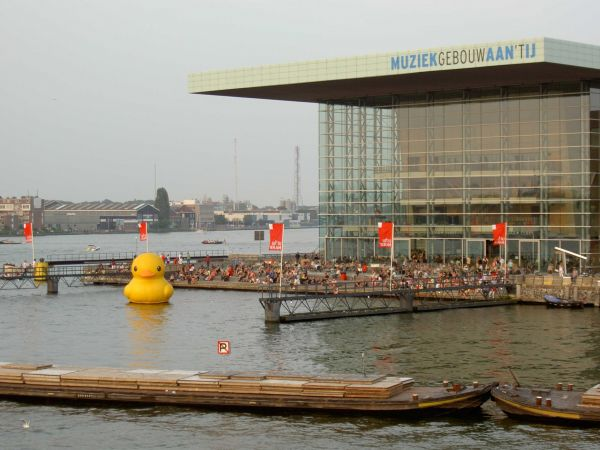 giant inflatable rubber ducky florentijn hofman amsterdam 2 The World Travels of a Giant Rubber Duck