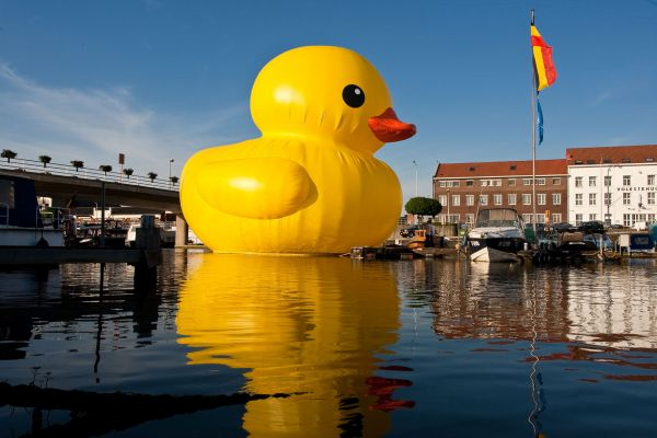giant inflatable rubber ducky florentijn hofman hasselt belgium 2 The World Travels of a Giant Rubber Duck