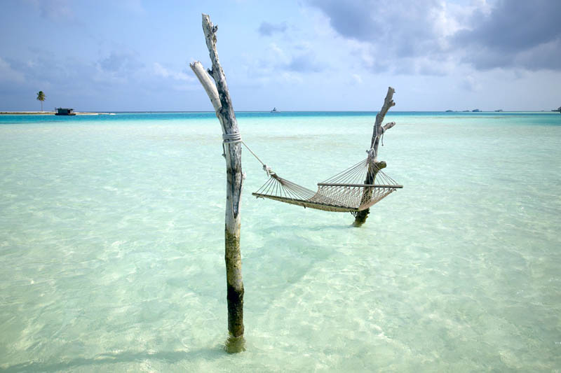 Picture of the Day: Great Place for a Hammock