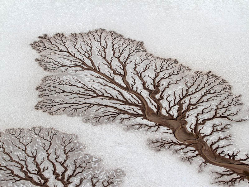 baja california desert dried out rivers salt flats mexico lichtenstein Picture of the Day: Fractal Patterns in Dried Out Desert Rivers