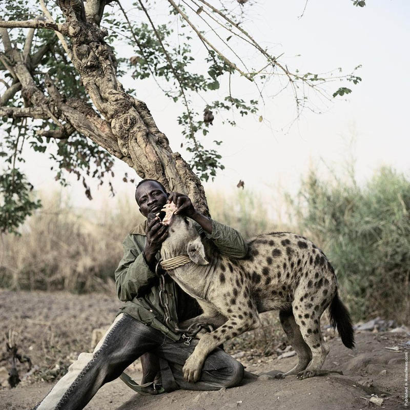 The hyena handlers of nigeria twistedsifter - Www nice pic other ...