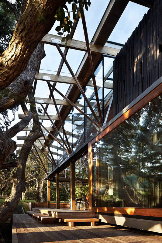 Award winning beach house surrounded by trees twistedsifter for Beach house design awards