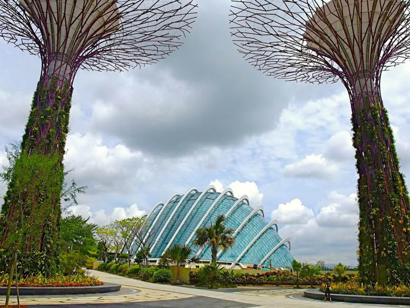 gardens by the bay supertrees with one of the two biomes in the background