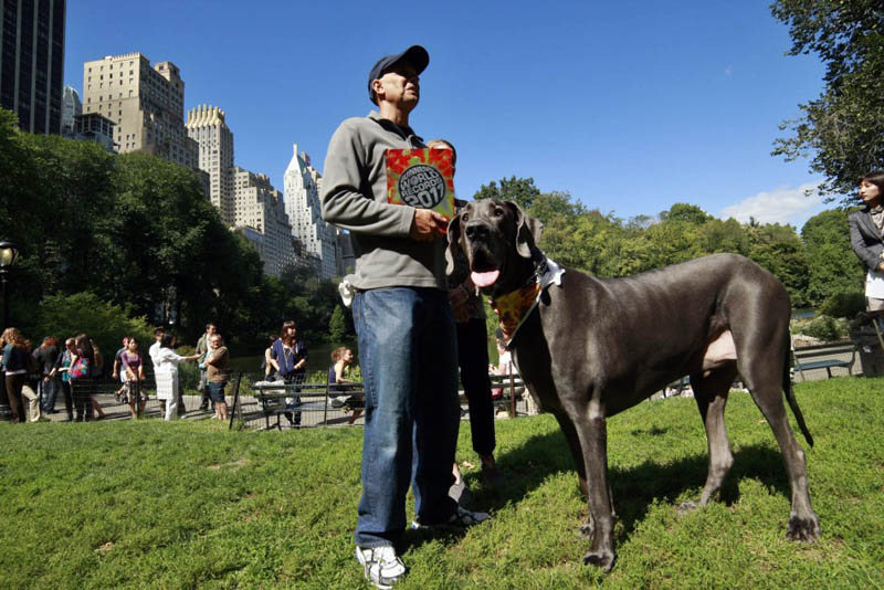 Giant George – The Tallest Dog in the World «TwistedSifter