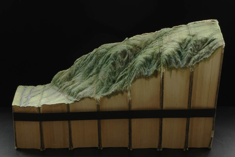 side profile of landscape carved into series of books