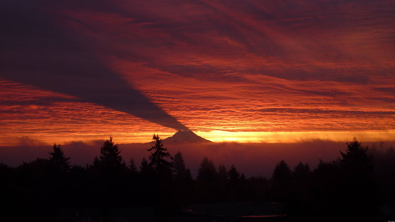 mount rainier casting a shadow on clouds Picture of the Day: Mt. Rainier Casting a Shadow on Clouds