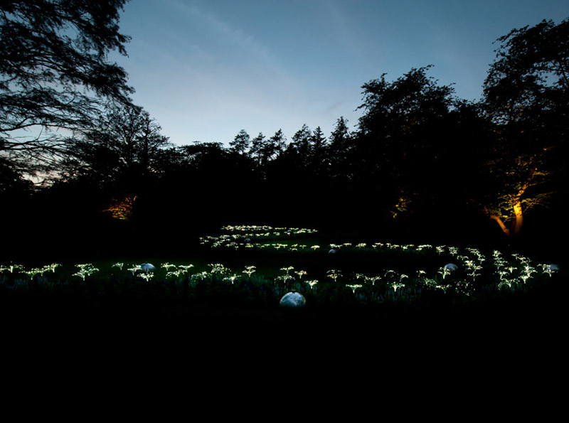 arrow spring light installation by bruce munro at longwood gardens Bruce Munros Light Installations at Longwood Gardens