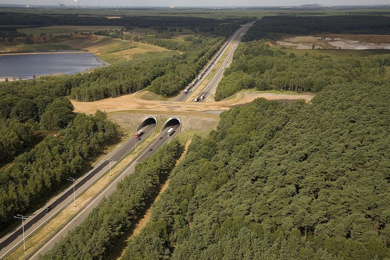 ecoducts crossing e314 belgium animal bridge wildlife crossing overpass This is the Worlds First Suspended Bicycle Roundabout