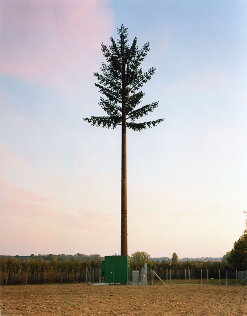 cell phone tower disguised as a tree 3 25 Cell Phone Towers Disguised to Look Like Something Else