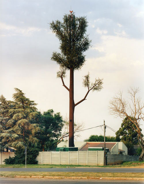 cell phone tower disguised as a tree 5 25 Cell Phone Towers Disguised to Look Like Something Else