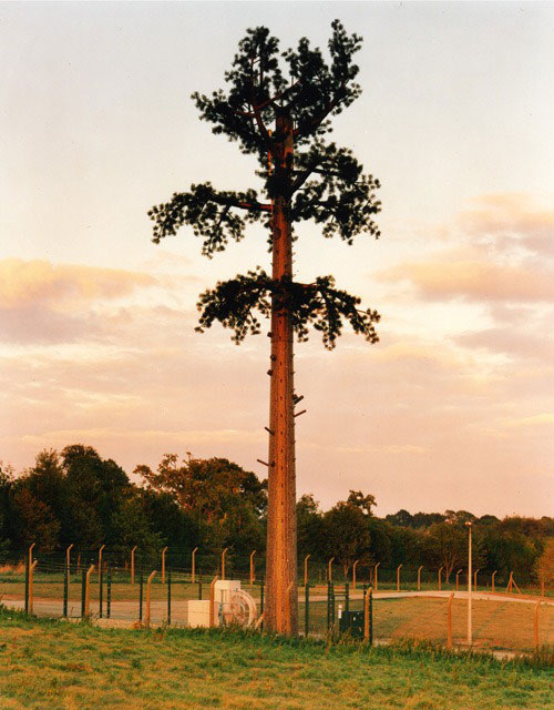 cell phone tower disguised as a tree 6 25 Cell Phone Towers Disguised to Look Like Something Else