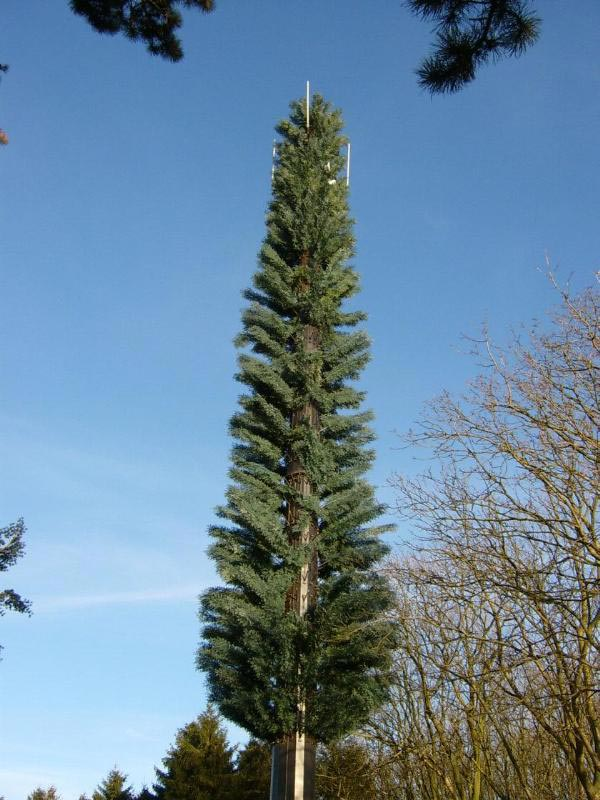 Image result for 5g antenna tree