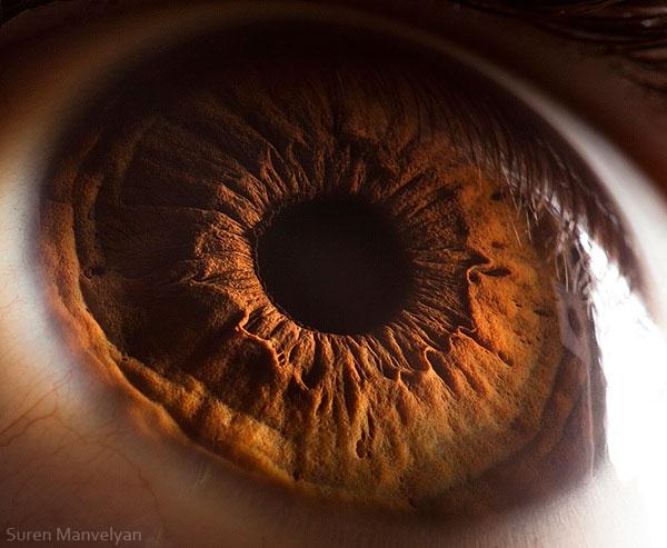 extreme close up of human eye macro suren manvelyan 10 21 Extreme Close Ups of the Human Eye