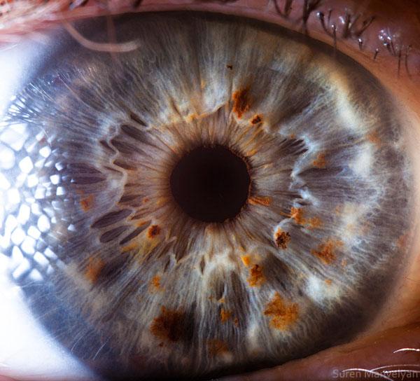 extreme close up of human eye macro suren manvelyan 21 21 Extreme Close Ups of the Human Eye