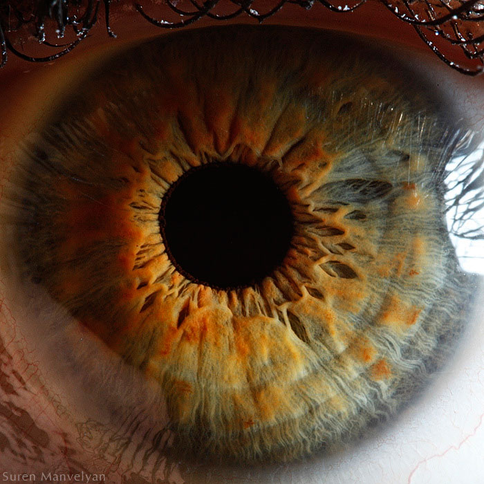 21 Extreme Close Ups Of The Human Eye Twistedsifter