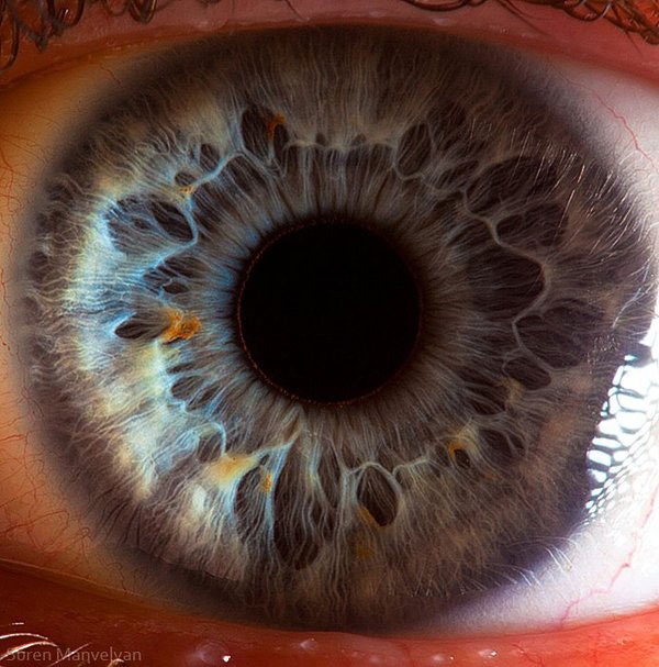 extreme close up of human eye macro suren manvelyan 8 21 Extreme Close Ups of the Human Eye
