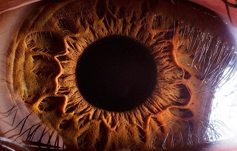 extreme-close-up-of-human-eye-macro-suren-manvelyan-(cover)