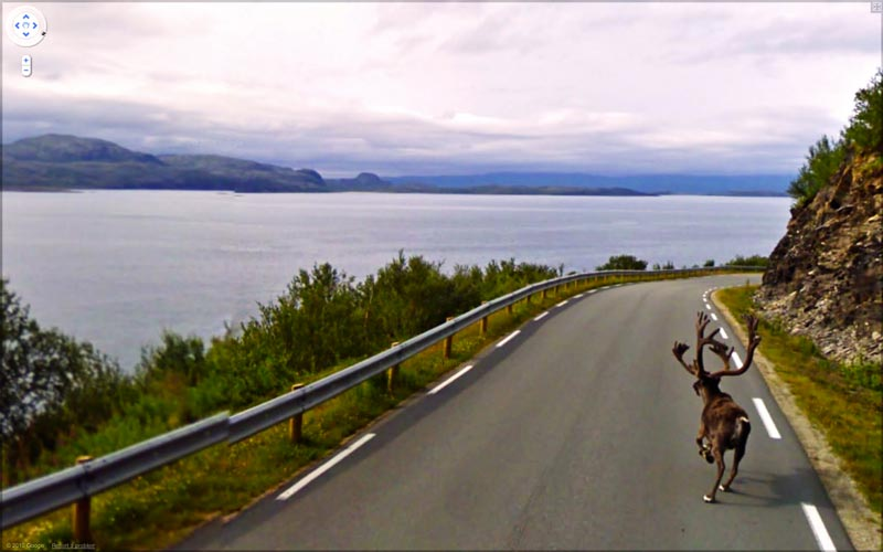 interesting google street view images 10 Snapshots of Life Captured on Google Street View