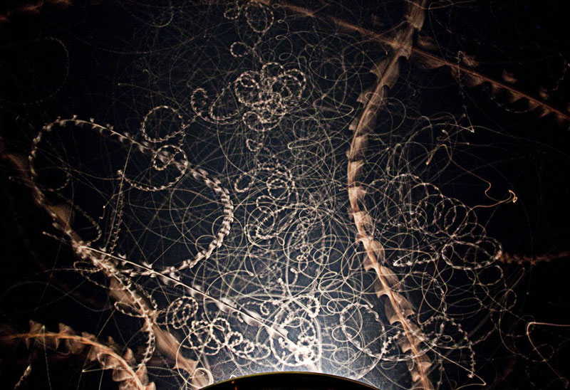 long-exposure-moth-trails-at-night.jpg?w=800&h=548