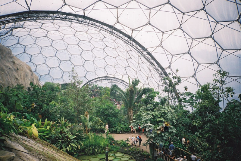eden project tropical biome inside The Largest Greenhouse in the World