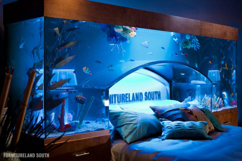 Cool custom fish tank headboard for your bed twistedsifter for Fish tank bedroom ideas