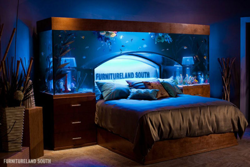 Cool custom fish tank headboard for your bed twistedsifter for M furnitureland south