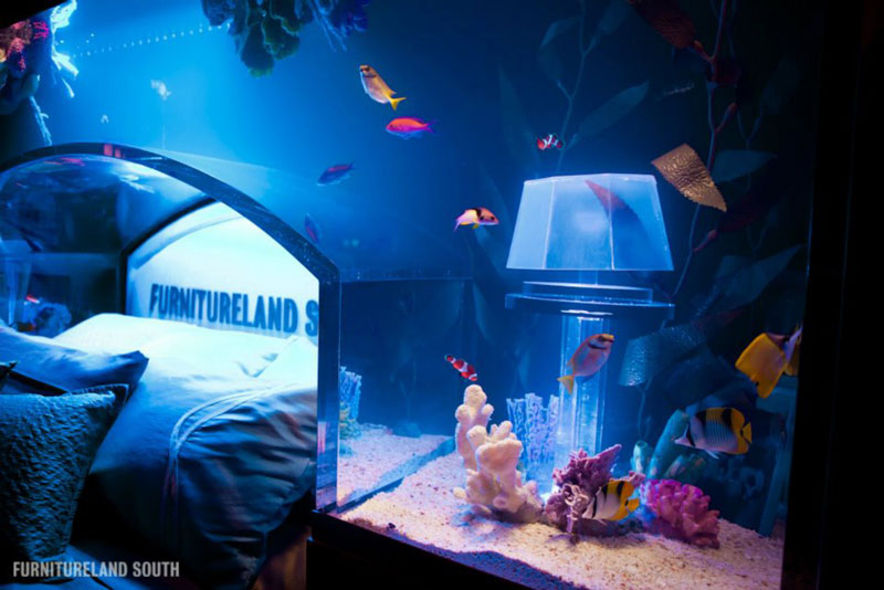 fish tank headboard above bed furnitureland south 5 Cool Custom Fish Tank Headboard for your Bed & Cool Custom Fish Tank Headboard for your Bed «TwistedSifter