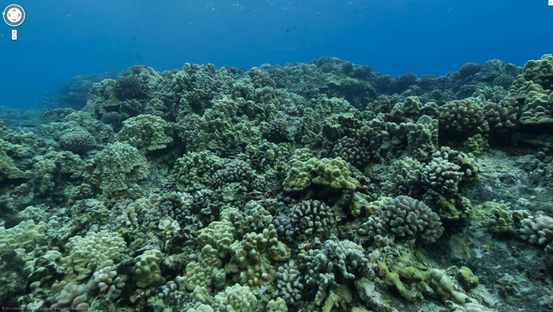 google maps street view molokini crater maui hawaii Google Adds First Underwater Panoramas to Maps and Street View