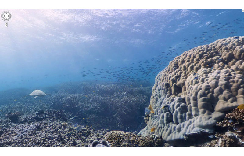 Google Adds First Underwater Panoramas to Maps and Street View